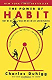 Book cover for The Power of Habit: Why We Do What We Do in Life and Business