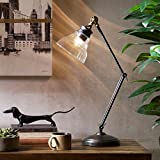 Modern Industrial Clear Glass Task Lamp in Bronze Metal Finish - Includes Modhaus Living Pen