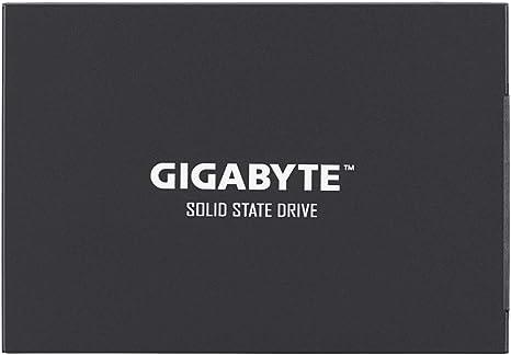 Gigabyte GP-GSTFS30256GTTD - Disco Duro sólido Interno de 256 GB ...