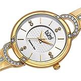 New Burgi Women's Swiss Quartz Diamond Stainless Steel Bangle Watch