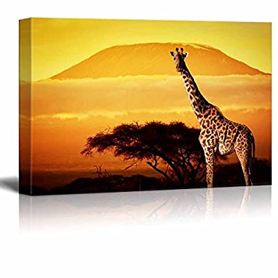 Canvas Prints Wall Art - Giraffe on Savanna Landscape Background and Mount Kilimanjaro at Sunset | Modern Home Deoration/Wall Art Giclee Printing Wrapped Canvas Art Ready to Hang - 12