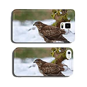 Common buzzard in winter cell phone cover case Samsung S6