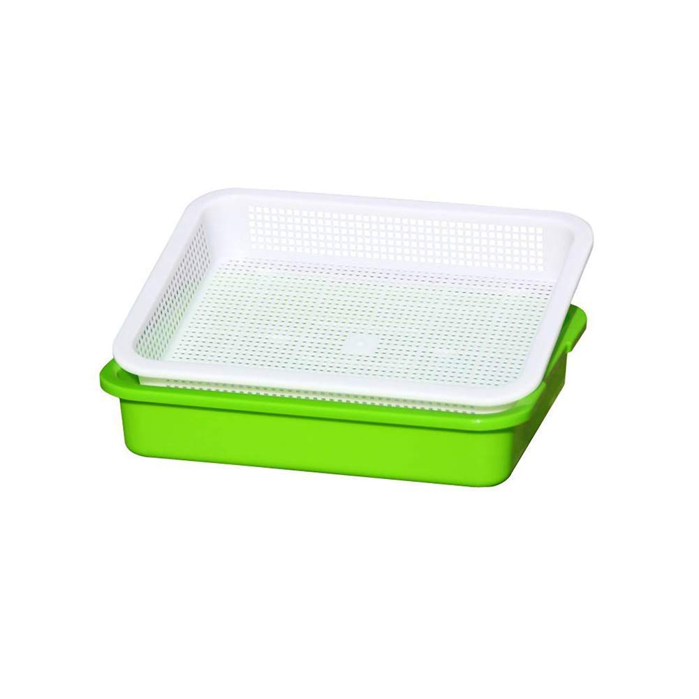 Double Deck Hydroponics Seedling Tray Sprout Plate Hydroponics System Nursery Pots Plastic Tray Green 1PC Premium Quality by Yevison