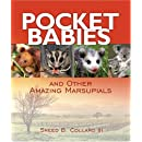 Pocket Babies: And Other Amazing Marsupials (Junior Library Guild Selection)