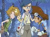 Digimon Adventure - Staffel 1, Volume 1: Episode 01-18 im Sammelschuber