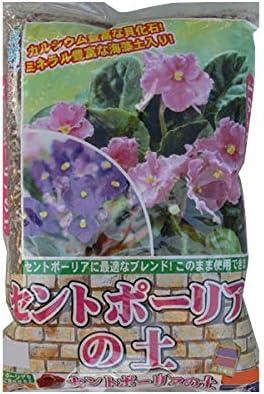 セントポーリアに最適なブランド!このまま使用できます! 2-14 あかぎ園芸 セントポーリアの土 4L 10袋 〈簡易梱包