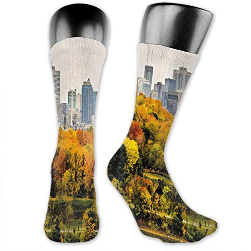 Compression Medium Calf Socks,Montreal Downtown Skyscrapers Autumn Various Trees Colorful Forest Urban Life Nature (Montreal Bedding)