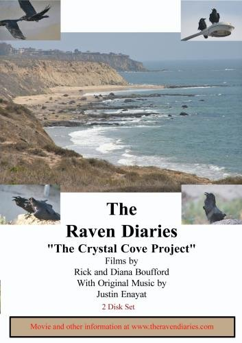 The Raven Diaries Part 4 - Crystal Cove Project (2 Disk Set) - Ihi Parts