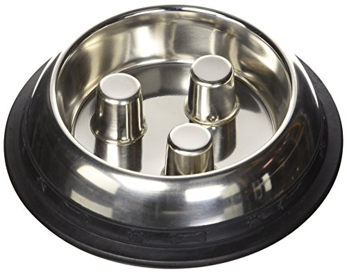 QT Dog Stainless Steel Brake-Fast Bowl, Small (Go Slow Dogit)