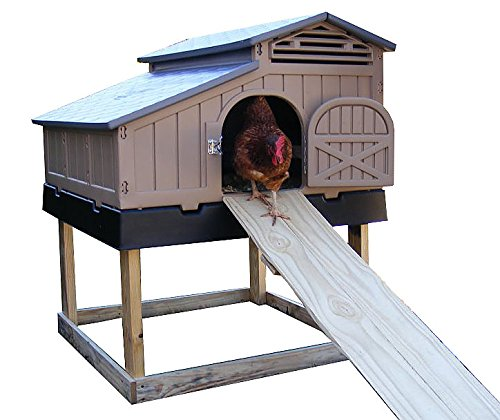 snap lock chicken coop review