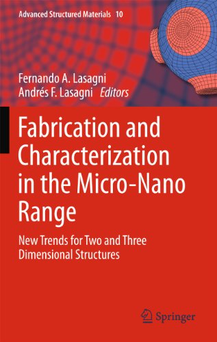 Fabrication and Characterization in the Micro-Nano Range: New Trends for Two and Three Dimensional Structures: 10 (Advanced Structured Materials) (Trend Beam)