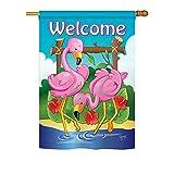 Cheap Breeze Decor BI-H-105029-IP Flamingos House Flag, 28″ x 40″, Multicolor