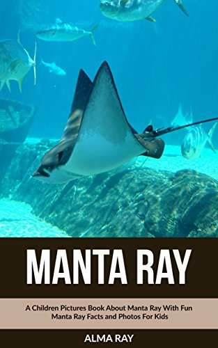 manta ray  a children pictures book about manta ray with