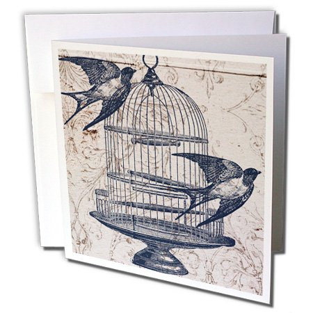 - Vintage Birds with Bird Cage Steampunk Art - Greeting Card, 6 x 6 inches, single (gc_110264_5)