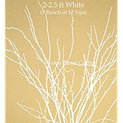 Green Floral Crafts SNOWY WHITE Birch/Beech Tips 2-2.5 Ft Tall, Pack of 12-15 Small Branches