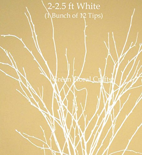 Green Floral Crafts SNOWY WHITE Birch/Beech Tips 2-2.5 Ft Tall, Pack of 12 Small Branch Tips