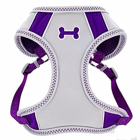 Amazon.com : Top Paw Sporty Comfort Adjustable Dog Harness, PURPLE