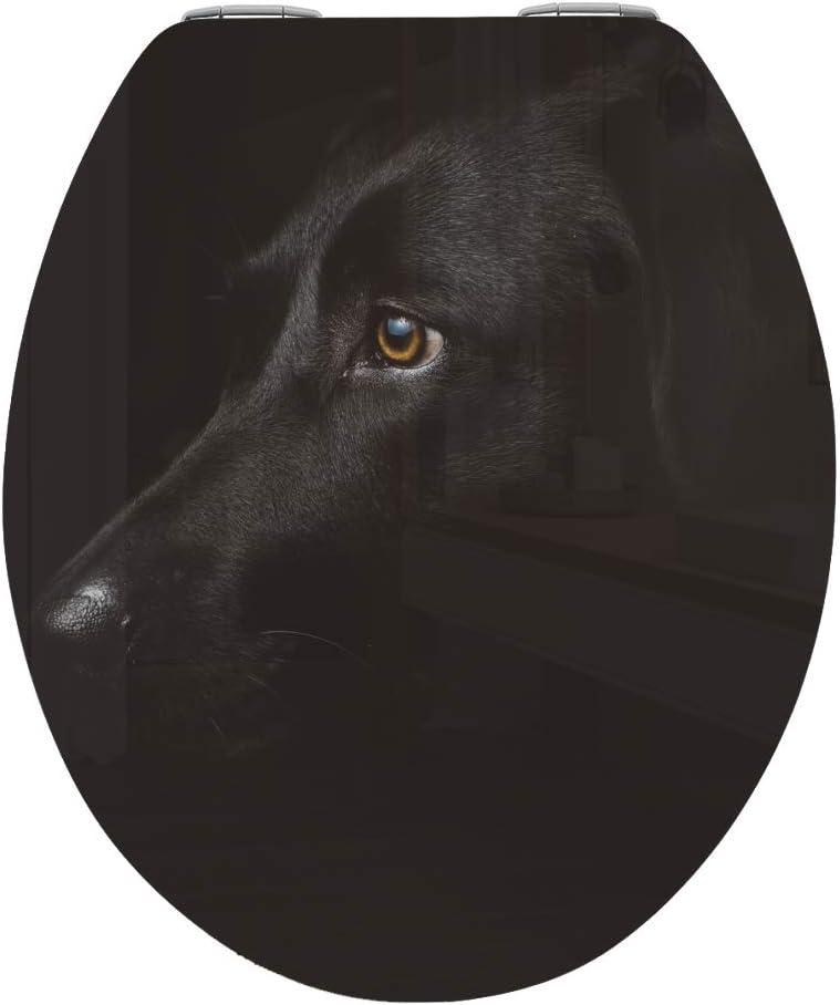 Decoside WC-Deckel KLEBEFOLIE Sticker Aufkleber Bad WC KLEBEFOLIEN WC-Sitz Klodeckel Folie Dark Dog
