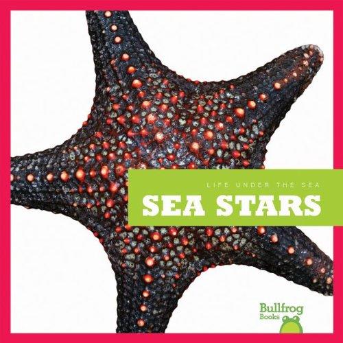 Download Sea Stars (Bullfrog Books: Life Under the Sea) pdf