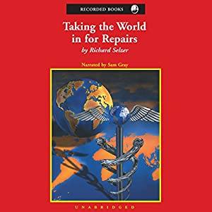 Taking the World in for Repairs Audiobook
