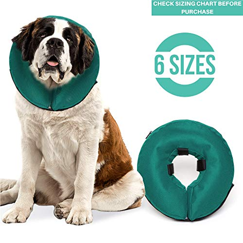 ProCollar Protective Inflatable Recovery