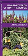 Invasive Weeds of North America: A Folding Pocket Guide to Invasive & Noxious Species (A Pocket Naturalist Guide)