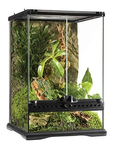 Exo Terra Glass Terrarium, 12 by 12 by 18-Inch (Best Crested Gecko Cage)