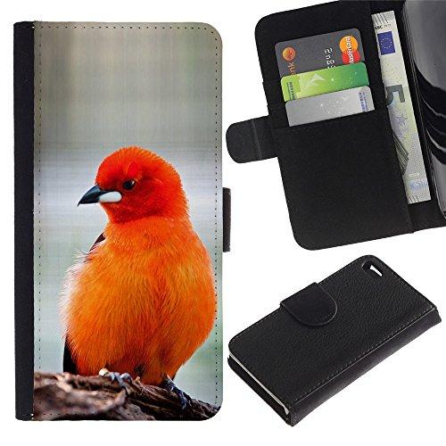 LASTONE PHONE CASE / Luxe Cuir Portefeuille Housse Fente pour Carte Coque Flip Étui de Protection pour Apple Iphone 4 / 4S / bird feathers orange red furry beak