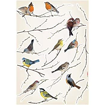 Amazoncom Flock Of Birds Flying Wall Decals Stickers Peel And - Wall decals birds