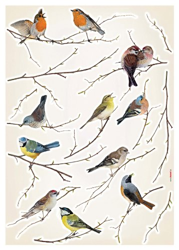 Brewster Komar LV19005 Peel & Stick Birds European Wall Decals