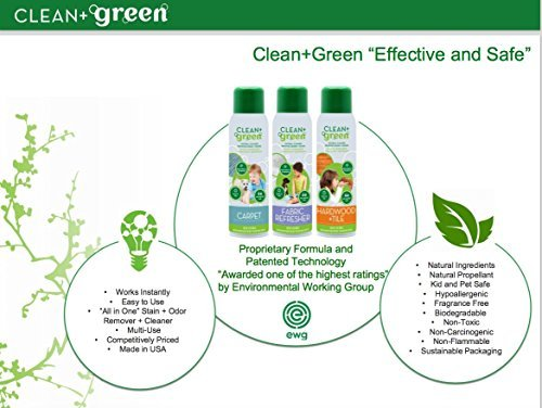 Non-Toxic Natural Carpet Rug Stain Remover, Deodorizer, Odor Eliminator – Multi Purpose Spray- Safe for Children, Pets, People, and Environment (14oz) (2 Pack) by Clean+Green (Image #4)