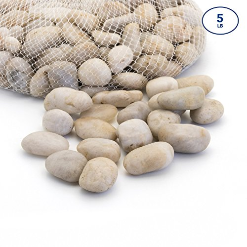 Royal Imports Large 5lb Decorative Ornamental River Pebbles Rocks for Fresh Water Fish Animal Plant Aquariums, Landscaping, Home Decor etc. with Netted Bag, Light Color by Royal Imports