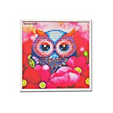 DIY Diamond Paiting for Children with Frame Child's Paint by Number Kits Arts Crafts for Home Wall Decor Gift Owl (colorful)