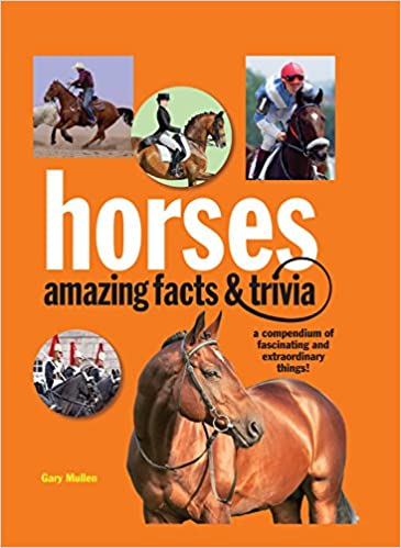 Amazing Facts and Trivia Horses