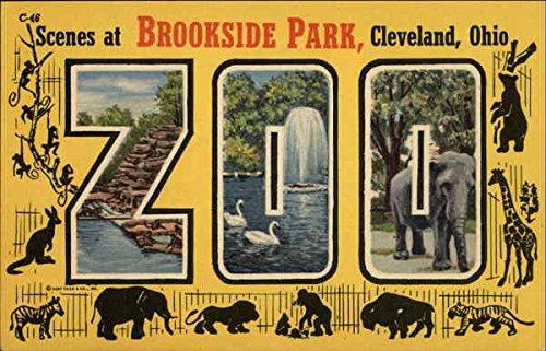 leveland, Ohio Original Vintage Postcard ()