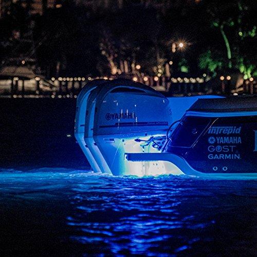 BLUE LUMITEC SEABLAZEX LIGHT LIGHT UNDERWATER x8tqBUw