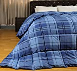 HBOEMDE Light Weight Down Alternative Quilted Comforter/Duvet-Anti Mite,Anti Mildew,Hypoallergenic Virgin Filling and Cover-Blue Print Gingham-Full/Queen