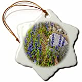 3dRose TDSwhite – Rock Photos - Rocks Flowers - 3 inch Snowflake Porcelain Ornament (orn_281927_1)