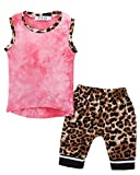 LOTUCY Toddler Kids Boys Sleeveless Tank Tops Vest +Leopard Harem Shorts Pants Clothes Size 12-18 Months/Tag90 (Pink)