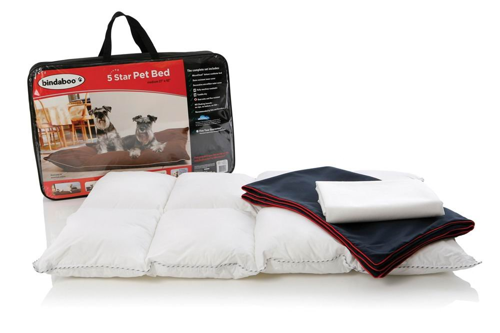 Bindaboo 5 Star Pet Bed, Blue with Red Piping