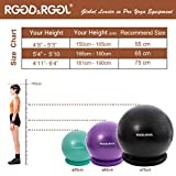 RGGD&RGGL Exercise Ball Chair(55-75cm), Extra Thick Yoga Ball with Adjustable Resistance Bands, Stability Ring, Workout Guide,Anti-Burst Balance Ball for Workout and Fitness
