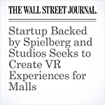 Startup Backed by Spielberg and Studios Seeks to Create VR Experiences for Malls | Ben Fritz