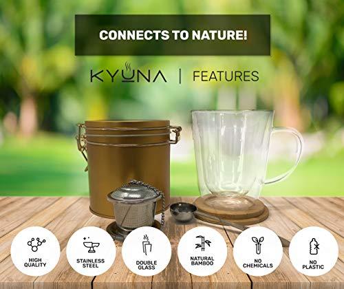 KYUNA TEA SET - DOUBLE GLASS TEA MUG - COFFEE MUG - GREEN TEA - LOOSE LEAF TEA INFUSER - CUP - BREWED TEA - TEASPOON - STAINLESS STEEL - WOODEN COASTER - TEA CANISTER (Gold)