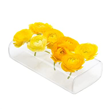 Chive - Hudson 8  Rectangular Unique Glass Flower Vase, Elegant Low Laying Clear Glass Bud Vase with 8 Holes for flowers