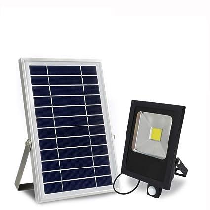 Amazon.com: Luz solar de inundación, inducción de movimiento ...