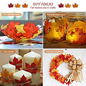 MerryNine 600 Assorted Mixed Deep Fall Colored Artificial Maple Leaves for Weddings, Thanks-Giving, Events and Outdoor Maple Leaf Cafe Decoration 5