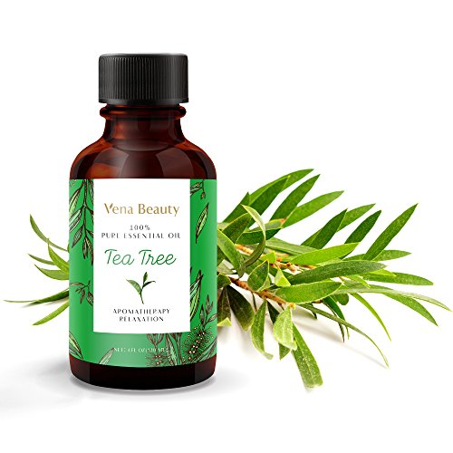 Tea Tree Essential Oil,100% Pure and Natural with Therapeutic Grade 4 fl oz by Vena Beauty Essential Oils Head Lice