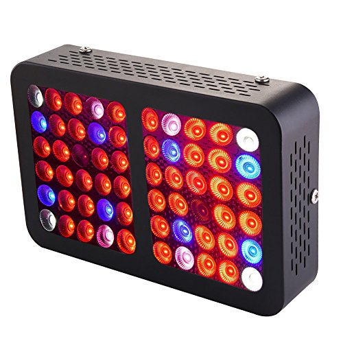 Grow Box Led Lights