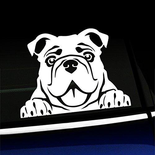 Artistic Reflection Peeking Bulldog - Vinyl Car Decal - Choose Color - - Bulldog Decal Vinyl