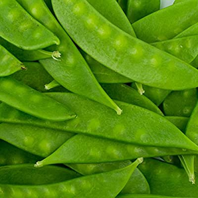 Mammoth Melthin Sugar Pod Snow Pea Garden Seeds - Non-GMO, Heirloom Vegetable Gardening & Microgreens Seeds